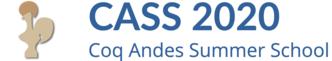 CASS 2020